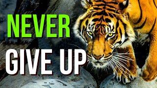 motivation status || motivational shayari status || motivational shayari