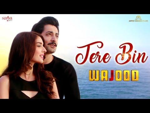 Tere Bin   Wajood Movie   New Love Song   Danish Taimoor, Saeeda Imtiaz   Hindi Song 2018