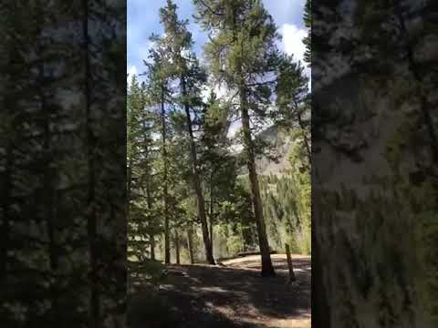 Video Of Twin Peaks Campground, CO