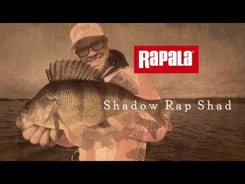 Воблер Rapala Shadow Rap Shad SDRS09-FT фото №3