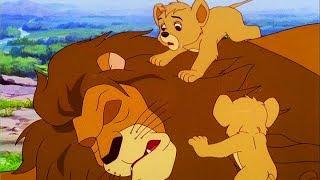 SIMBA RE LEONE | Episodio 1 | Italiano | Simba King Lion | Full HD | 1080p