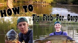 HOW TO FLY FISH FOR CARP -THE BASICS-