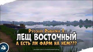 Лещ восточный на р. Ахтуба. Стрим Русская Рыбалка 4