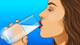 Сколько Воды Нужно Выпивать Каждый День?