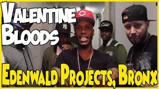 Edenwald Projects in the Bronx, New York; home of the Valentine Bloods