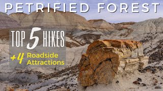Top 5 Hikes | Petrified Forest National Park | Arizona