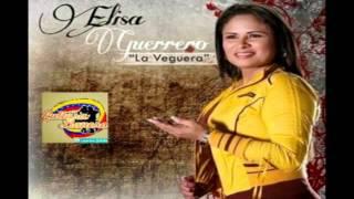 Despistada de amor - Elisa Guerrero