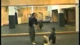 тренировки спецназа