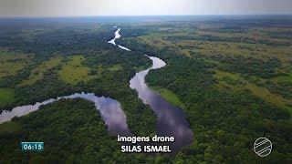 """Globo.com: Bom Dia MS - """"Pantanal: uma farmácia a céu aberto"""""""