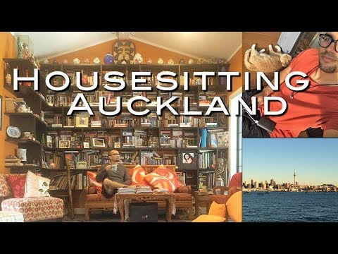 NZ32: A Simple Life // Housesitting & Working in Auckland