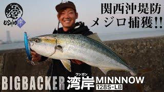 【USHIO】湾岸ミノーでメジロ捕獲!!関西 泉佐野一文字 / ビッグバッカー BIGBACKER / 杉山代悟