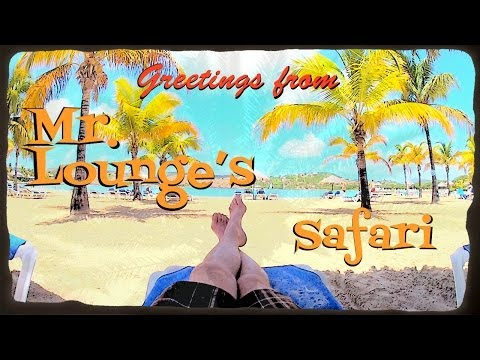 Mr. Lounge's Safari