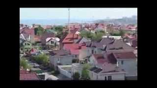 Совиньон, Одесса, О совиньоне краткий обзор