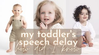 SPEECH DELAY IN 2 YEAR OLD || Late Talker Or Speech Delay