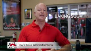 How to Remove Bad Smells from Your Car