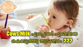 When and How to Introduce Cows Milk For Babies