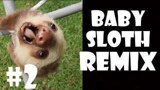Screaming Baby Sloth - Remix Compilation #2