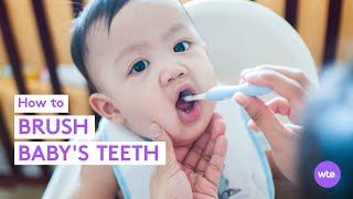 How to Brush Your Baby's Teeth - What to Expect