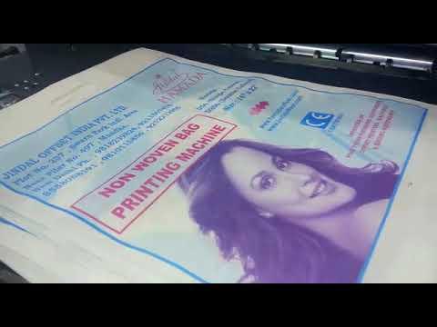 Hamada D 256 2 Color Non Woven Bag Printing Machine