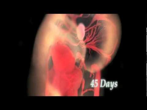 Hipertenzija donji vrh visoke niske