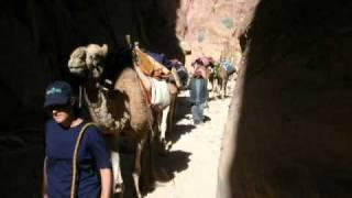 preview picture of video 'טיול לירדן עם גמלים - חולות נודדים'