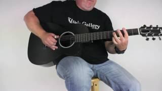 Rainsong P12 Carbon Fiber Parlor Acoustic Guitar | The Music Gallery