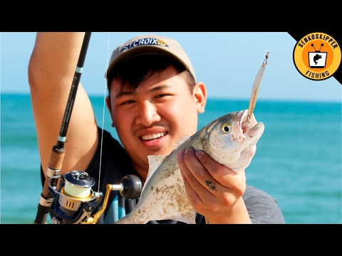 Beginner Beach Fishing Tips: Using Plugs and Lures