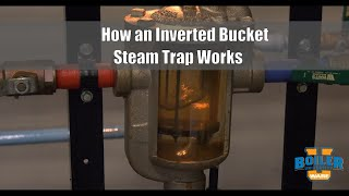 Steam Traps | How an Inverted Bucket Trap Work