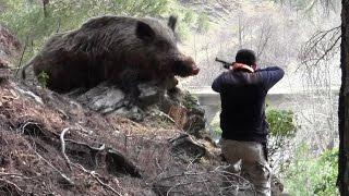 Необычные случаи на охоте и рыбной ловле кондратьев..