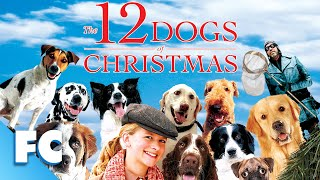 12 Dogs Of Christmas (2005) | Full Family Christmas Movie - Download this Video in MP3, M4A, WEBM, MP4, 3GP