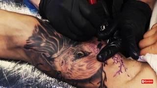 Eagle Tattoo Timelapse