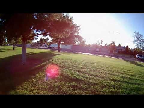 iFlight Cinebee 75HD Whoop - FPV Around & Through Trees at Phoenix Park