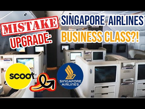 Mistake upgrade  scoot airlines economy to singapore airlines b777 200 business class     syd to sin
