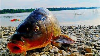 ВОТ ЭТО УЛЁТНАЯ РЫБАЛКА 2019 #86 Рыбалка видео приколы Fishing 2019