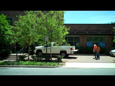 Rootwell Overview by ProArbor Tree Care, Virginia