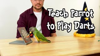 How to Teach Parrot to Play Darts