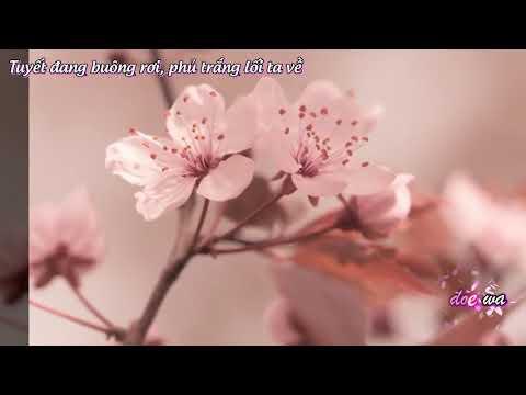 [M'] Sakura iro mau koro (Vietsub + Karaoke) 桜色舞うころ - Nakashima Mika 中島 美嘉 - Xe đạp tiếng Nhật