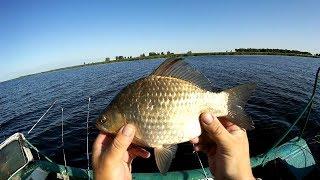 ОНИ ЧУТЬ НЕ УТАЩИЛИ УДОЧКУ Рыбалка  2019 ловим КАРАСЯ и ОКУНЯ