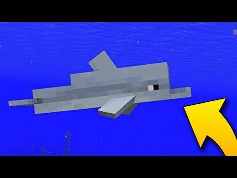 JAK PLAVAT RYCHLEJI NEŽ DELFÍN?? - Minecraft Dolphin #2 w/Sajmon