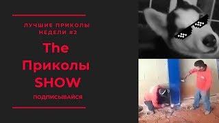 Лучшие приколы недели #2 ● The Приколы SHOW