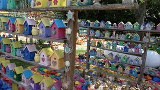 Bill Larkins Birdhouses