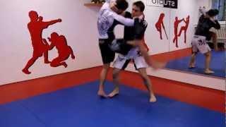 Luta Livre - Grappling - MMA im Kampfkunst-Studio München bzw. bei MMA-Erding