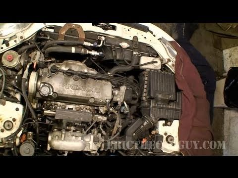 Die Charakteristik pescho 407 2.0 Benzin