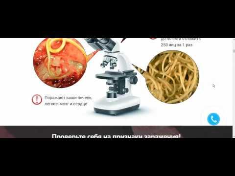Препарат от паразитов в организме человека купить