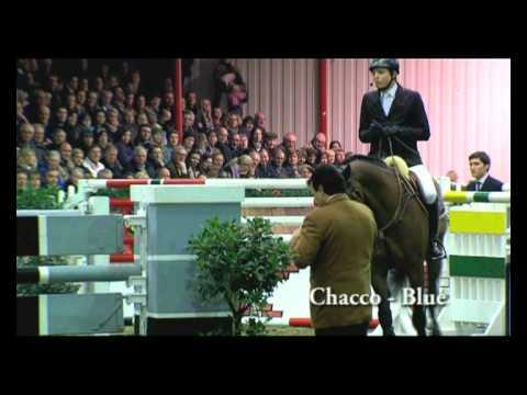 Chacco Blue