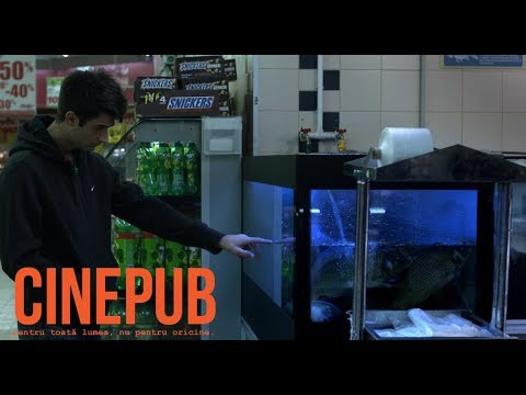 Claudiu și crapii | Claudiu and the Fish | Romanian Short Film | CINEPUB