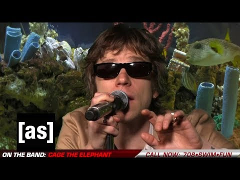 """Download Cage The Elephant """"Social Cues"""" 