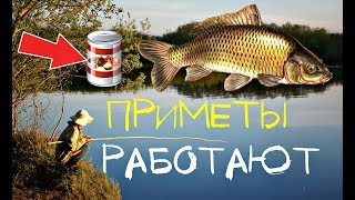 Заговоры и молитвы для удачной рыбалки