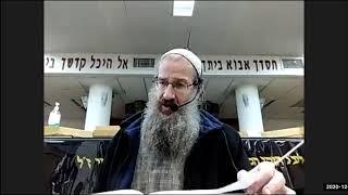 תלמוד ירושלמי מסכת שביעית פרק ב הלכה ג