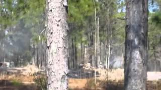 Battle of forks road reenactment 5 - Video Youtube